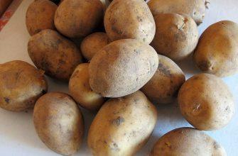 Картофель – лидер продаж стабфонда на Востоке