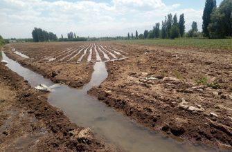 Мелиоративное состояние земель не внушает опасения