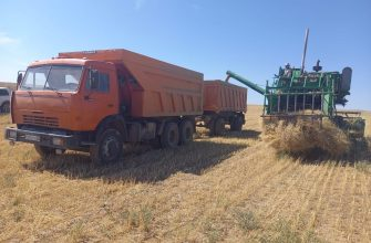 Приближаются к финишу: фермеры обеспечили уборку зерна на 88,2 процента