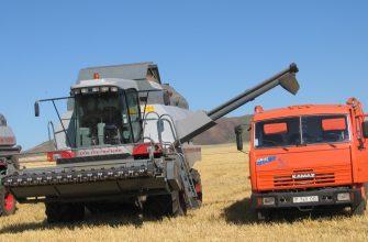 На Востоке убрано 18% зерновых