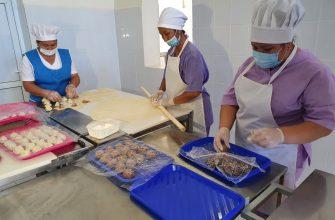 В ауле Тан Жалагашского района Кызылординской области заработали убойный и мясоперерабатывающий цеха