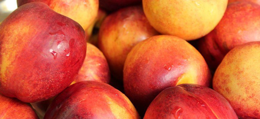 В РФ в узбекских фруктах нашли опасные карантинные объекты