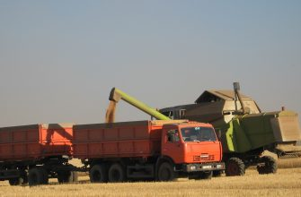 На Востоке намолотили почти 500 тыс. тонн зерна нового урожая